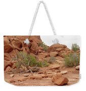 Desert Elements 5 Weekender Tote Bag