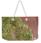 Desert Elements 7 Weekender Tote Bag