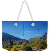 Desert Flowers In The Anza-borrego Desert State Park Weekender Tote Bag