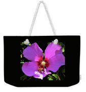 Desert Hibiscus With Honey Bee Weekender Tote Bag
