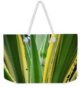 Desert House Aloe Succulent Weekender Tote Bag