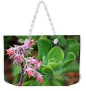 Desert House Blooming Succulent Weekender Tote Bag