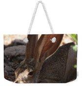 Desert Jackrabbit Weekender Tote Bag