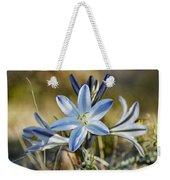 Desert Lily Weekender Tote Bag