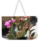Desert Plants - Fuchsia Cactus Flowers Weekender Tote Bag