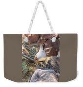 Desert Quail Weekender Tote Bag
