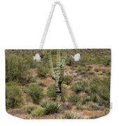 Desert Renewel Weekender Tote Bag