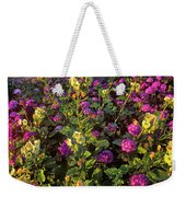Desert Sand Verbena And Brown-eyed Primrose Below The Coyote Mountains California Weekender Tote Bag