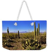 Desert Spring Weekender Tote Bag by Chad Dutson