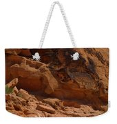 Desert Varnish Petroglyphs Valley Of Fire Weekender Tote Bag