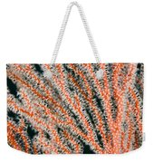 Detail Of Sea Fan, Or Gorgonian Coral Weekender Tote Bag