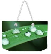 Dew Drops On A Blade Of Grass Weekender Tote Bag