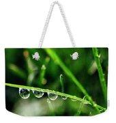Dew Drops On Blade Of Grass Weekender Tote Bag