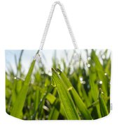 Dewdrops On New Wheat Weekender Tote Bag