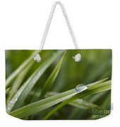 Dewy Drop On The Grass Weekender Tote Bag