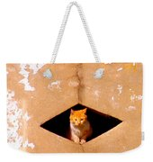 Diamond Kitty Weekender Tote Bag