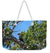 Ding Darling - Pileated Woodpecker Resting Weekender Tote Bag