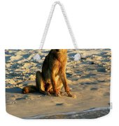 Dingo On The Beach Weekender Tote Bag