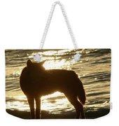 Dingo Sunset Weekender Tote Bag