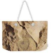 Dino Tracks In The Desert 2 Weekender Tote Bag