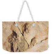 Dino Tracks In The Desert 3 Weekender Tote Bag