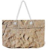Dino Tracks In The Desert 4 Weekender Tote Bag