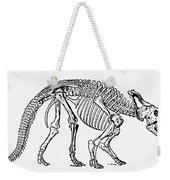 Dinosaur: Monoclonius Weekender Tote Bag