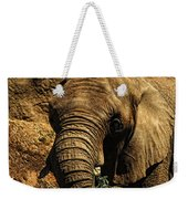 Disappearing Elephant Weekender Tote Bag
