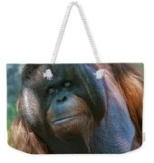 Disapproving Glance Weekender Tote Bag