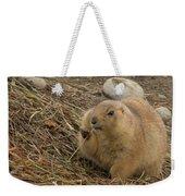 Discovery Bay-nov-140 Weekender Tote Bag