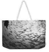 Diver And A Large School Of Bigeye Weekender Tote Bag