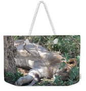 Do Not Wake The Sleeping Lion Weekender Tote Bag