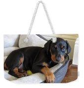 Doberman Puppy Weekender Tote Bag