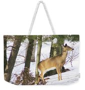 Doe Emerges Weekender Tote Bag