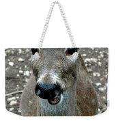 Doe Eyed Deer Talk Weekender Tote Bag