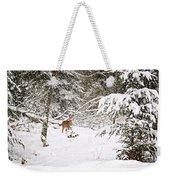Doe In Winter Snow  Weekender Tote Bag