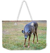 Doe Stomp Weekender Tote Bag