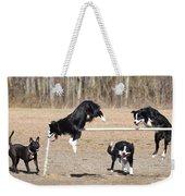 Dog 380 Weekender Tote Bag