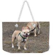 Dog 381 Weekender Tote Bag