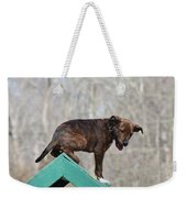Dog 388 Weekender Tote Bag