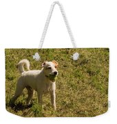 Dog And A Ball Weekender Tote Bag