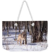 Dog Breed German Shepherd Weekender Tote Bag