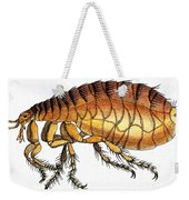 Dog Flea, Illustration Weekender Tote Bag