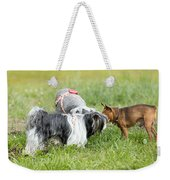 Dog Meeting  Weekender Tote Bag