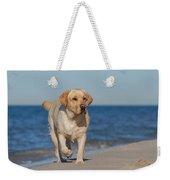 Dog On The Beach Weekender Tote Bag