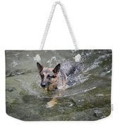 Dog Swimming In Cold Water Weekender Tote Bag