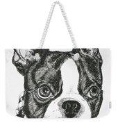 Dog Tags Weekender Tote Bag