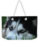 Dog Tired Weekender Tote Bag