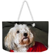 Dog Under Umbrella Weekender Tote Bag by Elena Elisseeva