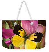Dogface Butterfly On Pink Calla Lily  Weekender Tote Bag
